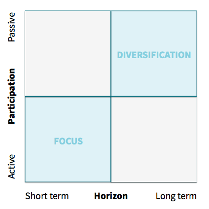 Focus vs Diversification